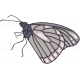 In Her Memory Mini Kit - Butterfly