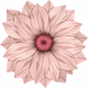 Renaissance Faire- flower 2