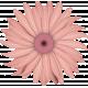 Renaissance Faire- flower 12