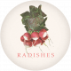 Garden Tales Elements- Radishes Round Tag