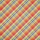 Pumpkin Spice - In the Orchard Plaid Paper
