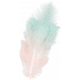 Frenchy Pink and Teal Feather
