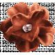 Inner Wild Orange Flower
