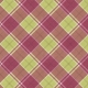 Delightful Days Plaid Paper- Red & Green