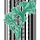 Coastal Spring Seaweed