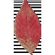 Old Farmhouse Red Leaf