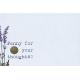 Lavender Fields Journal Card Penny 4x6
