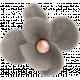 Autumn Bramble Gray Flower