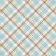 Positively Happy Plaid Paper 2