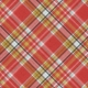 Positively Happy Plaid Paper 11