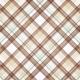 Nesting Plaid Paper 12