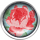 Retro Picnic Rose Brad
