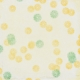 Peach Lemonade Slices Paper