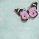 "Cherish Butterfly Journal Card 4""x 4"""