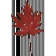 Furry Cuddles Red Leaf
