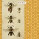 Heard the Buzz? Bees Journal Card 4x4