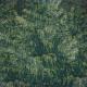 Rustic Wedding Journal Card Trees 4x4