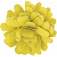 Naturally Curious Flower Yellow
