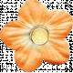 Backyard Summer Element Flower Orange 2
