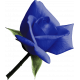 Kitty Love Element- Blue Bud Rose