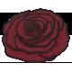 My Life Palette- Flower Doodle (Burgundy Rose)