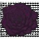 My Life Palette- Succulent Doodle (Purple Ecchevaria)