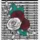 My Life Palette- Rose Cluster