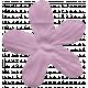 Tooth Fairy Flower 026