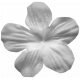 Flower 137 Template