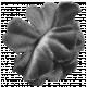 Flower 139 Template