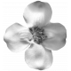 Flower 140 Template