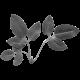 Leaf 062 Template