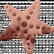 PSDCFeb21LRStarfish