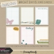 Bright Days Grid Journal Cards Kit