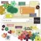 Taiwan Elements Kit