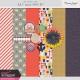 The Good Life: July 2020 Mini Kit
