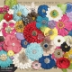 All the Princesses - Flower Kit