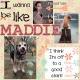 I Wanna be Like Maddie
