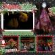 The Magic of Christmas Lights