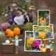 Autumn at Cantigny
