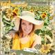 Sunflowers at Waterdrinker Farm