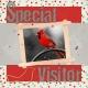Special Visitors