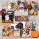 My Little Pumpkin