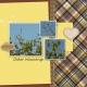 Family Album 2017: Cedar Waxwings