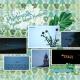 Family Album 2015: Photowalk- Panther Island Pavilion