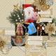 Special Ornaments