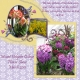Mount Holyoke Flower Show 02