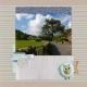 Around Grasmere