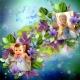 My Fairy Princesses