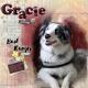 Gracie the Bark Ranger